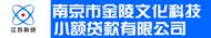 南京市金陵文化科技小额贷款有限公司