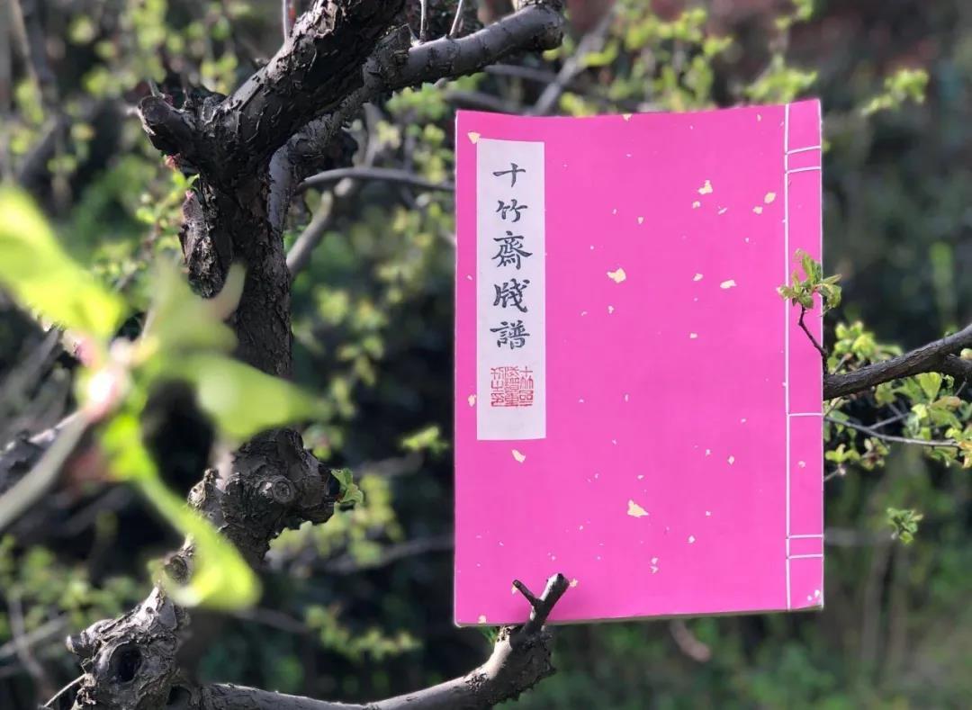 限量美好 | 990部重刊《十竹斋笺谱》向全球公开发行